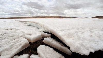 Identifican 28 virus desconocidos en hielo de un glaciar tibetano de hace 15.000 años de antigüedad