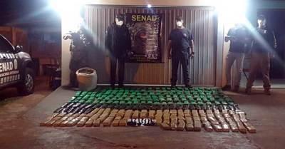 Confiscan más de 200 kilos de marihuana en Canindeyú