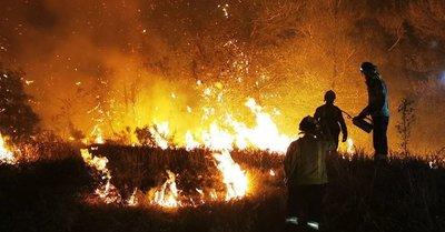 Catástrofe ecológica en España: los incendios arrasan miles de hectáreas en Cataluña