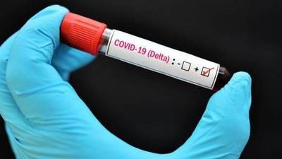 Estirpe delta amenaza con alejar el umbral de inmunidad de grupo – Prensa 5
