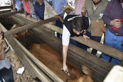 Paraguay firma acuerdo con la visión de dejar de vacunar contra la fiebre aftosa