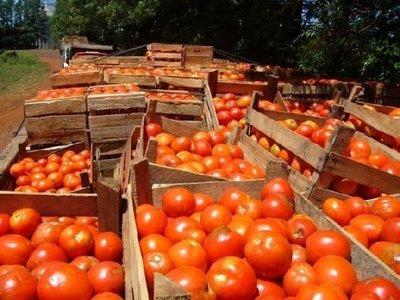 Frutihortícolas: productores acusan invasión de productos de Brasil y Argentina