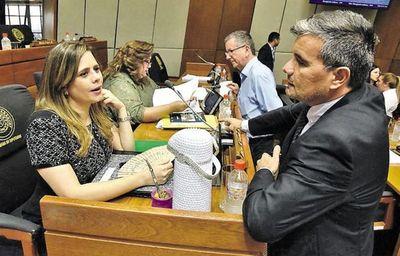"""Diputados opositores plantearán remitir a la comunidad internacional informe de deuda """"ilegal"""" de Itaipú"""