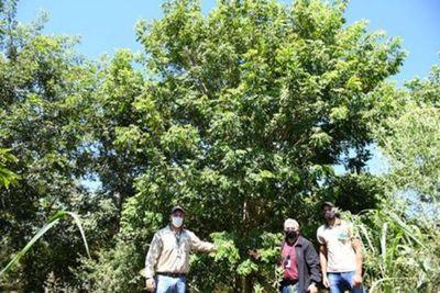 Reserva de Biósfera de Itaipu alienta a la producción sostenible en comunidades
