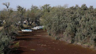 Argentina declara la emergencia hídrica por el histórico descenso del río Paraná