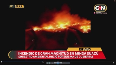 Incendio forestal de gran magnitud en Minga Guazú