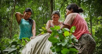 La Nación / Apuntan a fortalecer políticas que favorezcan el rol de las mujeres rurales