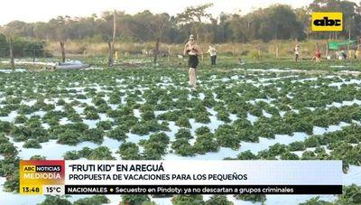 """Fruti kid"" en Areguá"