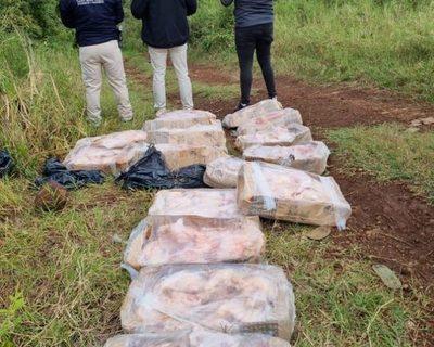Incautan cajas de pollos a orillas del río Paraná