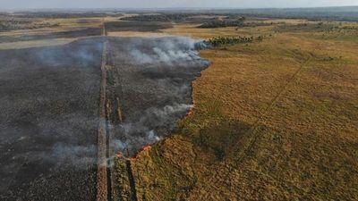 Incendio afectó a parte de la Reserva San Rafael en Itapúa