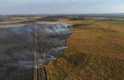 Incendio de gran magnitud afectó a la Reserva San Rafael en Itapúa