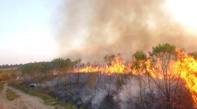 Incendios forestales afectaron la Reserva San Rafael: 60 hectáreas fueron consumidas