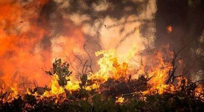 Focos de calor van en aumento debido a quemas de pastizales e incendios forestales