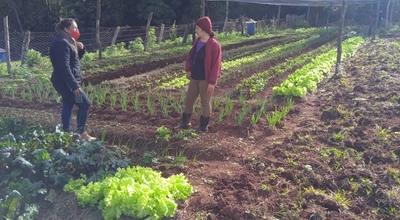 Mujeres rurales de Itapúa reciben capacitación para mejorar y comercializar productos hortícolas