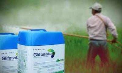 Francia multa a Monsanto por recopilar de forma ilegal datos de activistas y periodistas