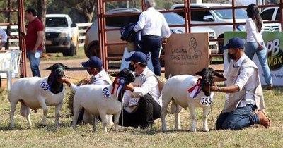 La Nación / Feria de ovinos generó G. 230 millones en negocios