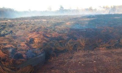 Imputan a dos hombres por irracional quema en cementerio de cubiertas