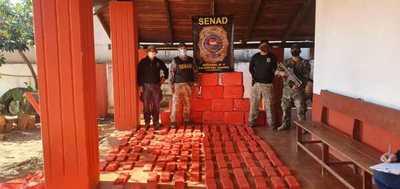 Senad incautó casi media tonelada de marihuana en zona rural de Canindeyú