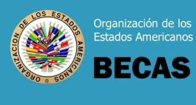 Publican lista de preseleccionados a becas de la OEA