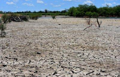 Navieros advierten que la bajante de los ríos impactará en la economía del país
