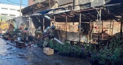 La Nación / Controlan incendio del Paseo de los Yuyos en el Mercado 4