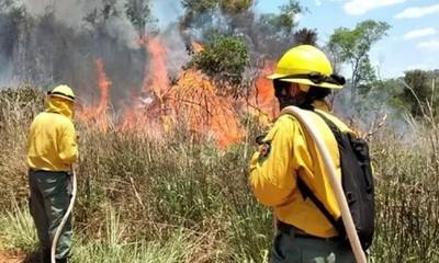 Alertan sobre aumento de incendios forestales