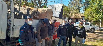 Detienen a dos presuntos abigeos y recuperan tres vacas en Caacupú