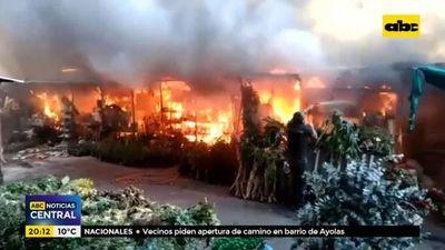 Incendio afectó el paseo de los yuyos