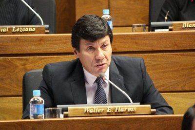 """""""Acaso tengo que dar la lista de los senadores simpatizantes, amigos del EPP"""", disparó el diputado colorado Walter Harms"""