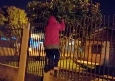 Vecinos atraparon a delincuentes, pero los volvieron a soltar porque la policía no llegó