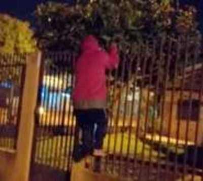 Rateros fueron maniatados por vecinos, pero policías nunca llegaron