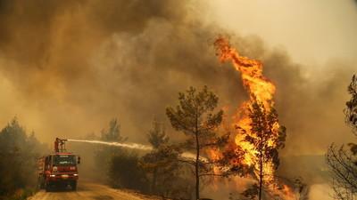 Turquía evacúa la ciudad turística de Bodrum por incendios forestales