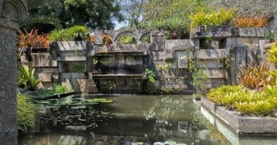 La Nación / Sitio Roberto Burle Marx en Rio: laboratorio de paisaje de 45 años