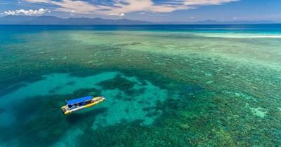"""La Nación / La Gran Barrera de Coral evita su inclusión como patrimonio mundial """"en peligro"""""""
