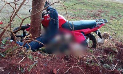 Motociclista muere tras chocar violentamente contra un árbol