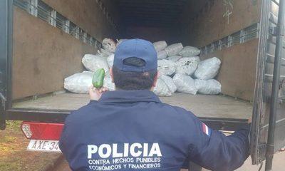 Incautan más de 5.000 kilos de locote de contrabando