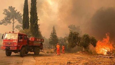 Incendios causan estragos en Turquía