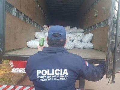 Decomisan 5.800 kilos de locote contrabandeado en Minga Guazú