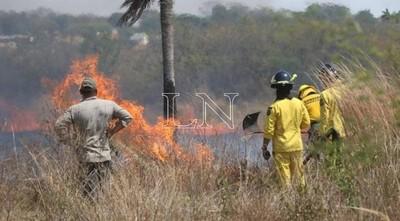 Articulan acciones ante sequía y posibles incendios forestales