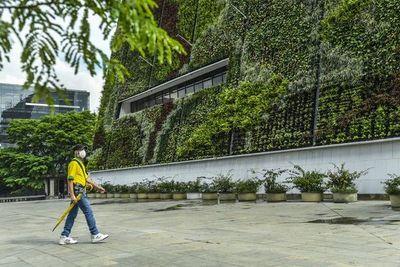 Ciudades cada vez más verdes