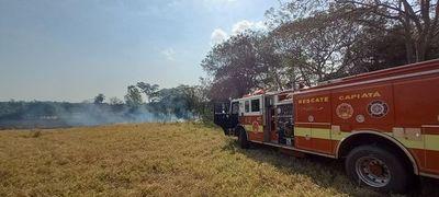 Reportan principio de incendio en pastizales cerca del vacunatorio Rubén Dumot