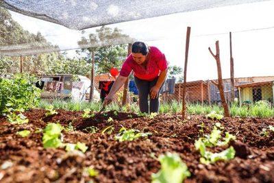 El Gobierno casi triplicó la inversión destinada a productores agrícolas de Misiones, a través de la EBY