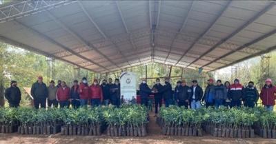 ENTREGAN UN TOTAL DE 3000 PLANTINES DE CÍTRICOS INJERTADOS EN CAMBYRETÁ Y NUEVA ALBORADA
