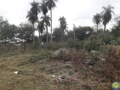 Dueño deberá pagar más de G. 40 millones de multa por no limpiar su terreno •