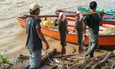 Casi 8.000 pescadores se verían afectados si se adelanta la veda pesquera, según Mades