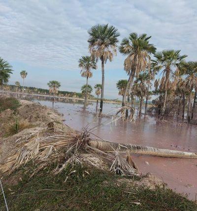 Sigue temor de contaminación de arroyos con desechos industriales en Paraguarí
