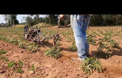 Con ingenio y mucha destreza, agricultor armó una motoaradora