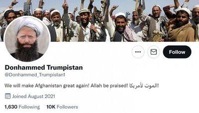 Donald ha vuelto a Twitter… como Donhammed Trumpistan
