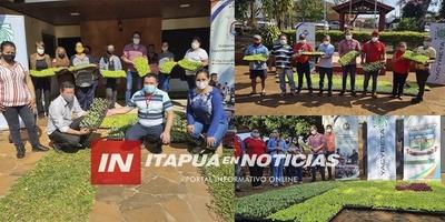 ENTREGA DE PLANTINES A TRAVÉS DEL PROGRAMA «PROYECTOS PRODUCTIVOS AGROPECUARIOS PARA FAMILIAS VULNERABLES»