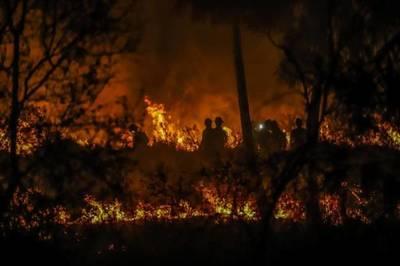 MADES pide denunciar quema de pastizales y basuras ante Municipios